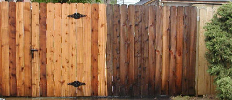 Fencing Half Cleaned By Mr Clean Pressure Washing